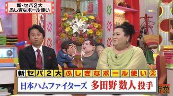 怒り新党 TDN 動画